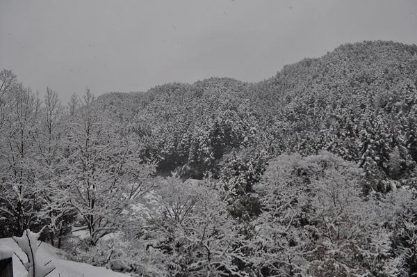 14雪DSC_0124