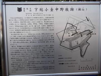 DSCF0389.jpg