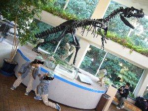 恐竜とa.jpg
