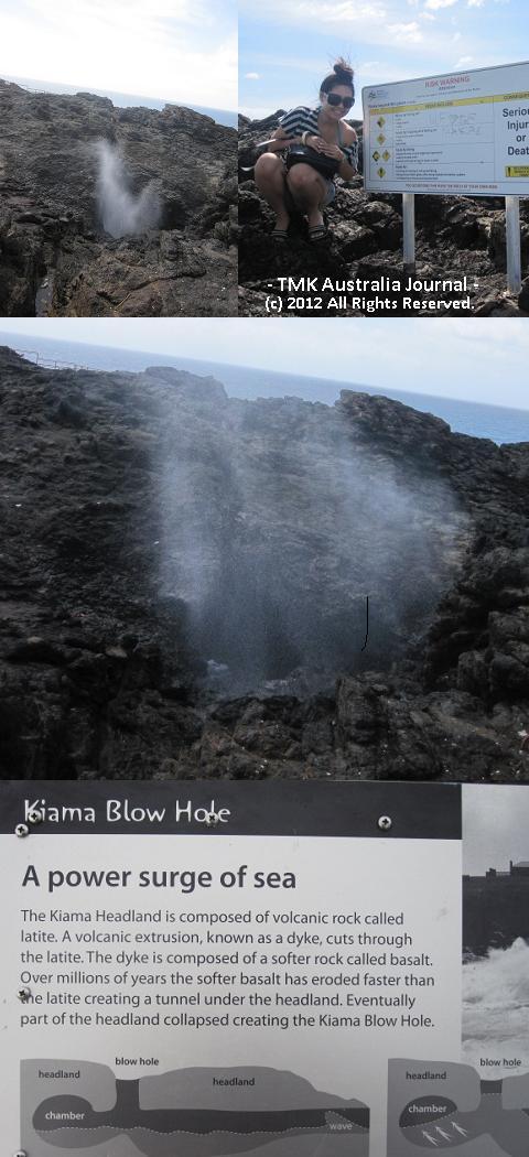 Blowholeのしぶき