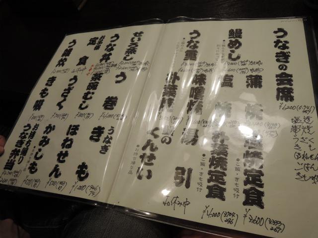 DSCN3709HYS.jpg