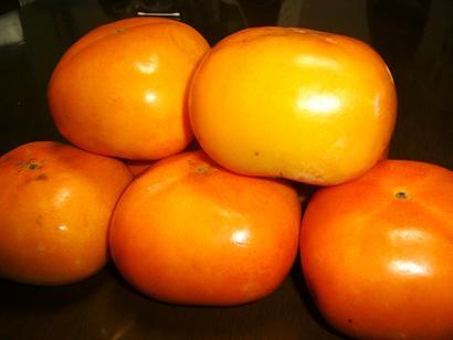 24-10柿