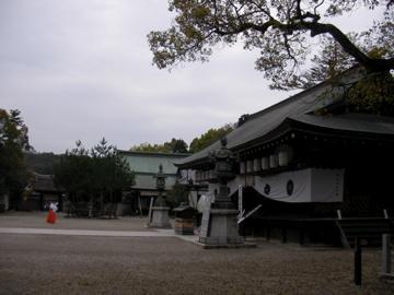 いざなぎ神社4