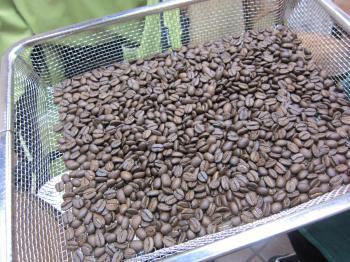 コーヒー豆屋3