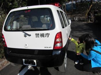 桜祭りパトカー
