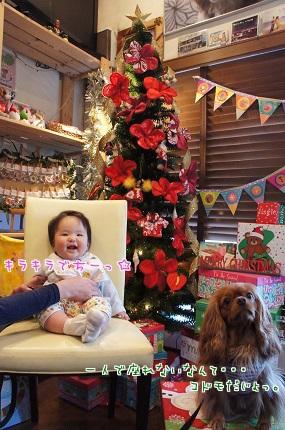 嵐丸 2013.11.24-11