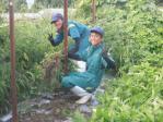 農業体験実習