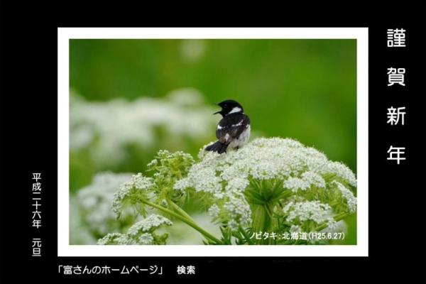 H26nenga_01.jpg