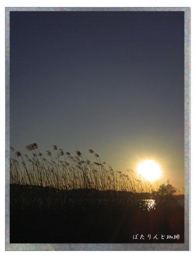 20090103手賀沼