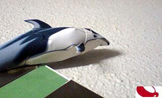 ペーパークラフトのイルカ
