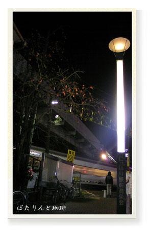 街灯と踏み切り、そして柿の実