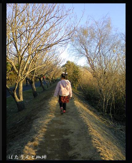 手賀沼散歩