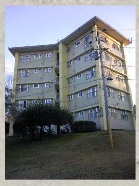 星型住宅その1