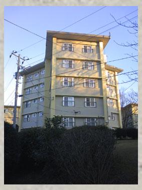 星型住宅その2
