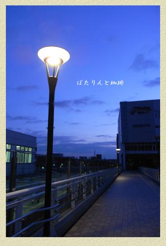 早朝の電燈