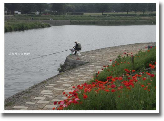 釣り人と紅い花
