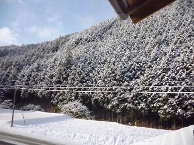 yukiyama_convert_20111225205730.jpg