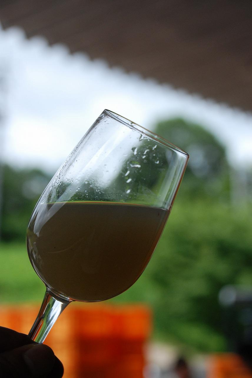 グラスin果汁