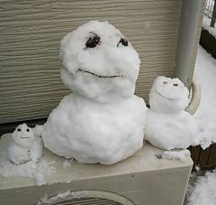 雪IMG_20140208_140831