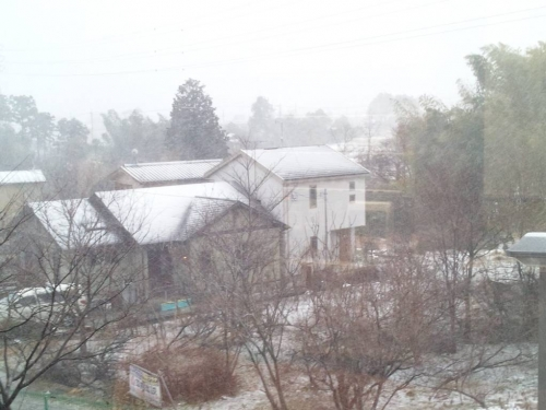 2週連続大雪の静岡県裾野市の吹雪状況を施設2階から写メ