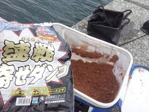 ブログ写真の磯釣りで寄せエサをダンゴに手で練って針に小エビで行った写真