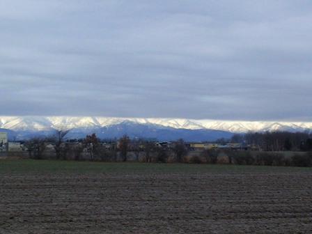 降雪前景色近景
