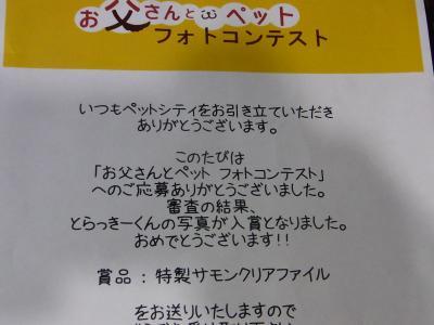 RIMG4957_convert_20110906203203.jpg
