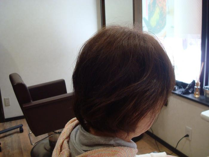 DSC05594_convert_20120128195154[1]