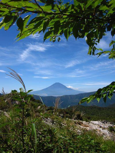 IMG_3467 富士山