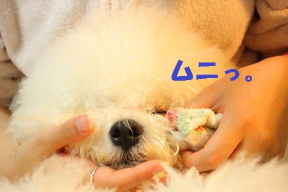 18_20120222020717.jpg
