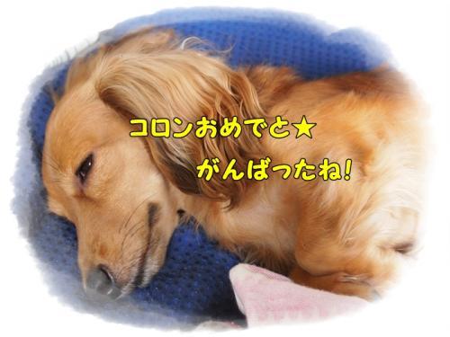 058_20110924160702.jpg