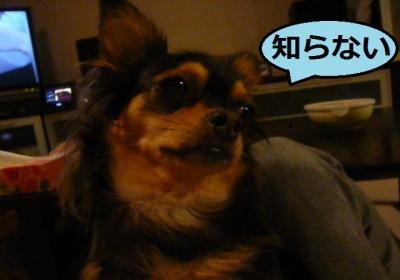 005_convert_20111022215240.jpg