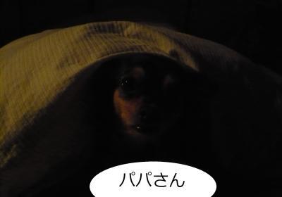 縺セ縺」縺溘j_convert_20111104231828