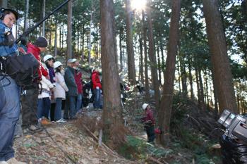 伐採体験・伐採見学ツアー「与作ツアー」