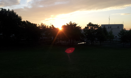 20120831_045543.jpg