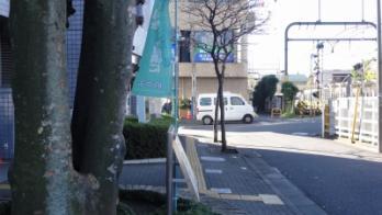 s-DSC00571.jpg