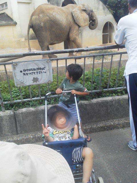 大牟田動物園 009-1