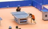酒井明日翔VS郡山北斗4 全日本選手権2014