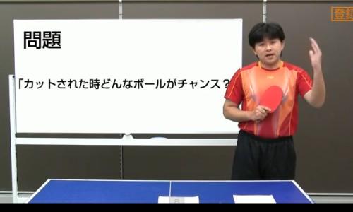 動画大4819