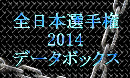 全日本選手権2014速報データボックス