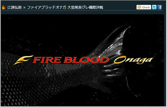 2013FIRE_ONAGA.jpg