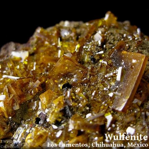 モリブデン鉛鉱_メキシコ2_480