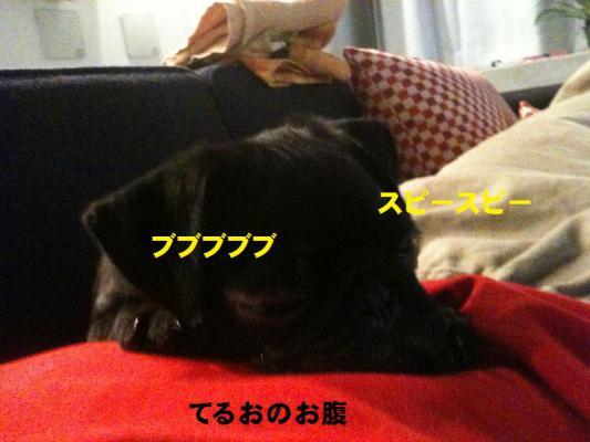 2010.11.24lブログ