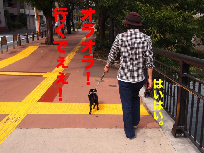 P9302576ブログ_convert_20111107211333