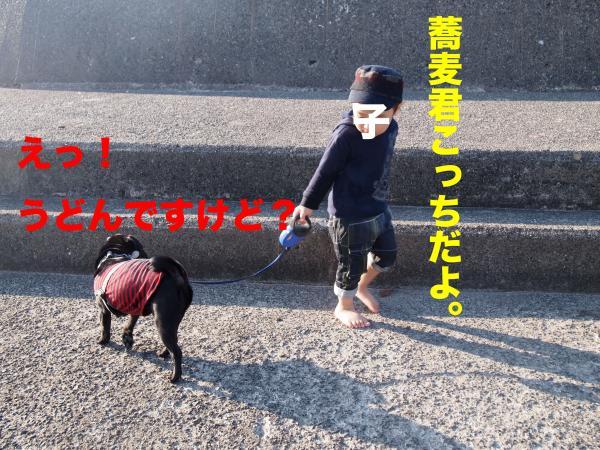 PA292919ブログ_convert_20111123153805