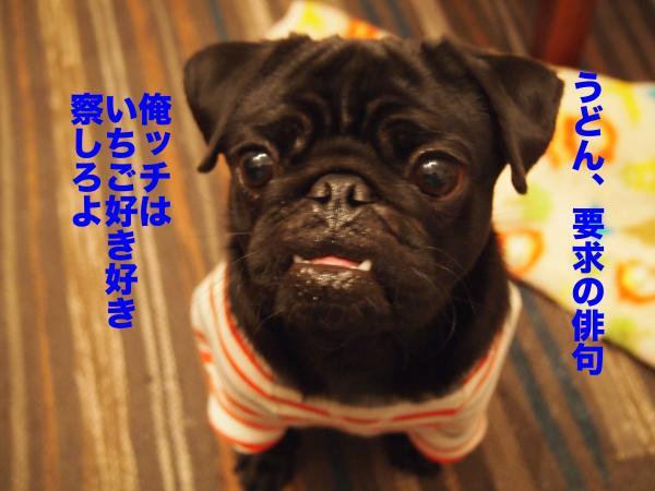 P2215000ブログ_convert_20120308234927