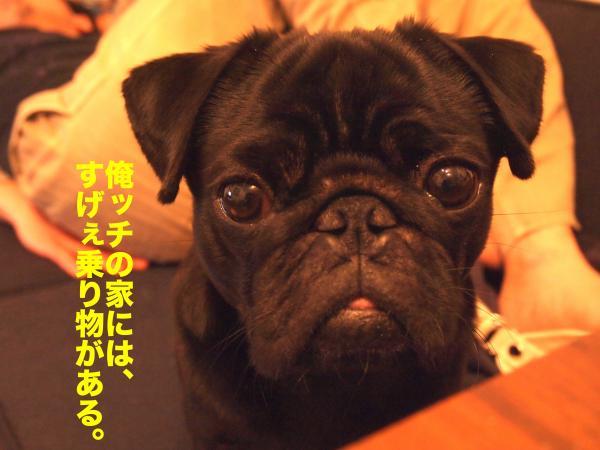 P4025419ブログ_convert_20120414205124