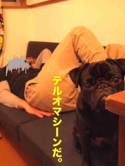 P4025416ブログ_convert_20120414205108