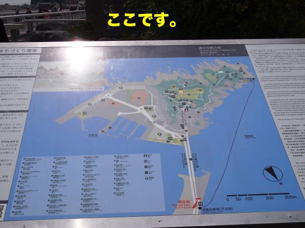 P4165677ブログ_convert_20120424220009