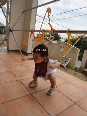 DSC05097_convert_20110915120317.jpg